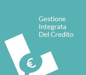 gestione-integrata-del-credito-ARIS-srls-societa-di-consulenza